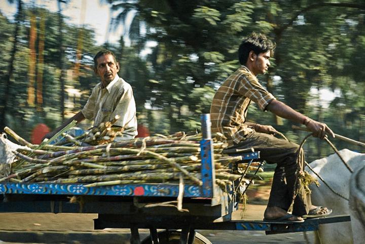 Sidewalk Mumbai